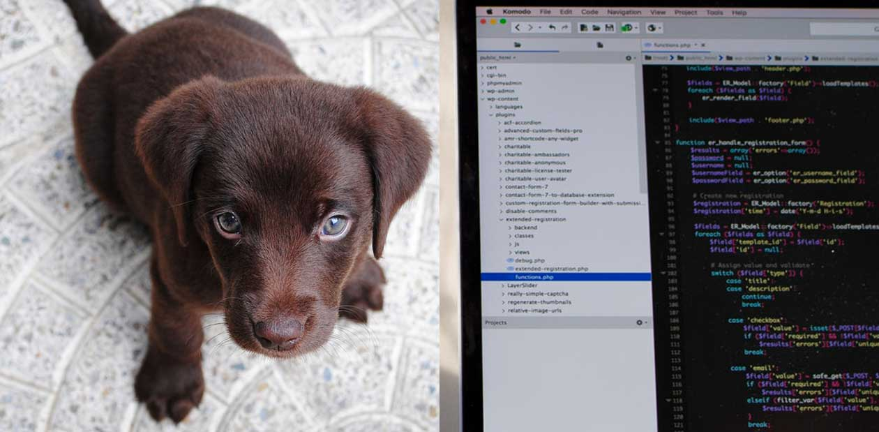 Open source software is free like a puppy